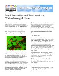 Mold Prevention and Treatment in a
