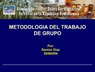 METODOLOGIA DEL TRABAJO DE GRUPO - CEDAF