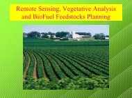 Proposed Concepts in Predictive Vegetative Analysis and Biofuel ...