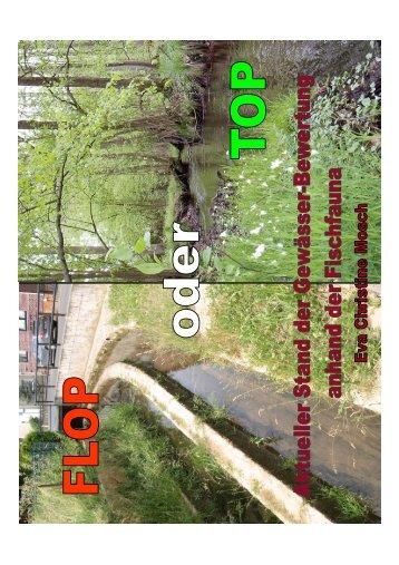 Gewässerbewertung nach WRRL anhand der ... - Wanderfische