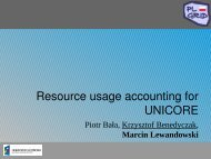 Resource usage accounting for UNICORE