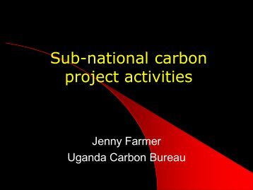 Presentation: Sub-national carbon project activities