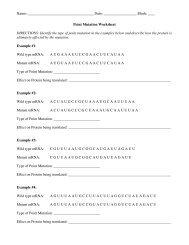 Point Mutation Worksheet - nnhsbergbio