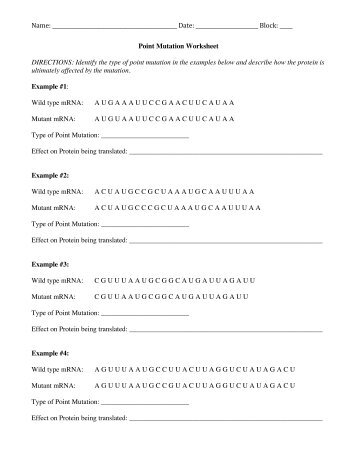 Stem Career Worksheet