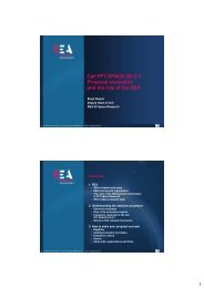 Call FP7-SPACE-2012-1: Proposal evaluation and the role of the REA
