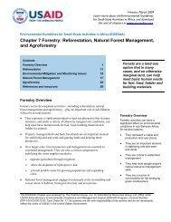 Chapter 7 Forestry: Reforestation, Natural Forest Management
