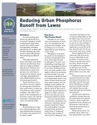 Reducing Urban Phosphorus Runoff from Lawns - Sera-17