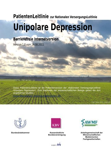 Patientenleitlinie Unipolare Depression - Nationale ...
