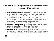 Chapter 19 Population Genetics and Human Evolution