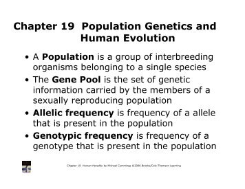Chapter 19 Population Genetics and Human Evolution