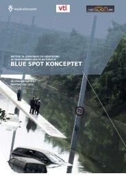 Blue spot konceptet Rapport - Klimatilpasning