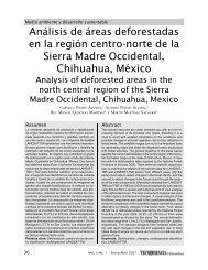 Análisis de áreas deforestadas en la región centronorte de la Sierra ...
