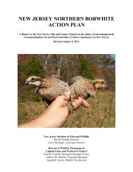 new jersey northern bobwhite action plan - Division of Fish and ...