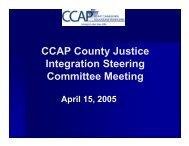 CJIEP - JusticeSteeringPresentation APRIL 2005