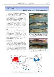 サケ科魚類のプロファイル No.8 ブラウントラウト - 水産総合研究センター
