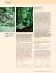 Forest Councils - World Resources Institute - Page 4