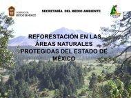 Presentación Secretaría de Medio Ambiente del Gobierno ... - CINU