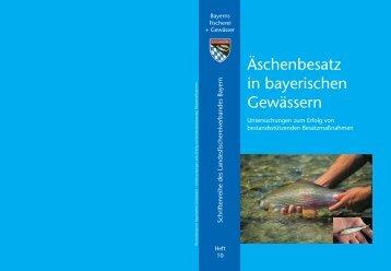 Äschenbesatz in bayerischen Gewässern - Büro Marco Sander