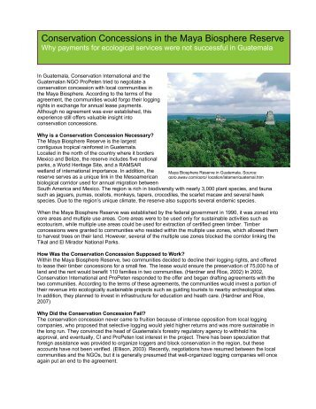 Conservation Concessions in the Maya Biosphere Reserve