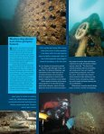 OutdoorIllinois June 2006 Underwater Museums ... - Illinois DNR - Page 3