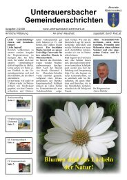Ausgabe 2/2008 (2,19 MB) - Unterauersbach