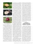 Resistência de Inimigos Naturais - Biotecnologia - Page 4