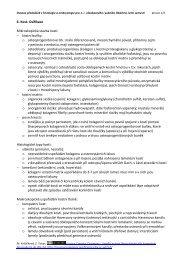 Web Developer Zoznamka stránky