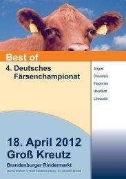 Fleischrinder - Rinderzucht Mecklenburg Vorpommern