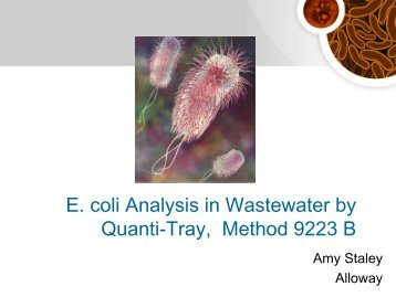 E. coli Analysis in Wastewater by Quanti-Tray ... - Ohiowater.org