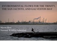 ENVIRONMENTAL FLOWS FOR THE TRINITY, THE SAN JACINTO, AND ...