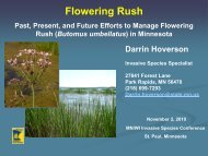 Past, Present, and Future Efforts to Manage Flowering Rush