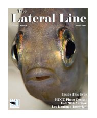 Lateral Line October 2006.pub - Hill Country Cichlid Club