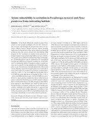 Xylem vulnerability to cavitation in Pseudotsuga ... - Tree Physiology