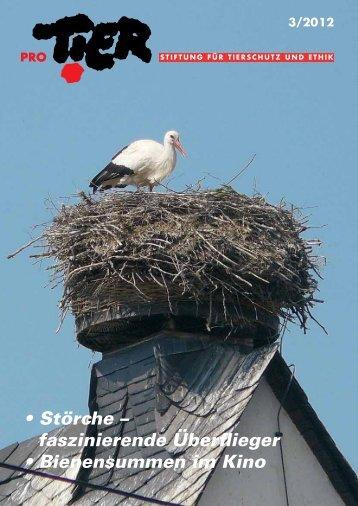 Heft 3/2012 - Pro Tier