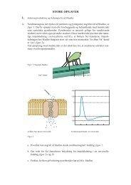 Juletræsproduktion og bekæmpelse af bladlus