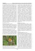 Registros notáveis de aves para o Sul do Estado de Minas Gerais ... - Page 7