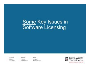 Some Key Issues in Software Licensing