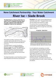 Select here to download the River Ise - Slade Brook data document