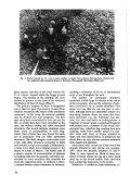 Markku Makivuoti AN IRON· AGE DWELLING SITE AND BURIAL ... - Page 4