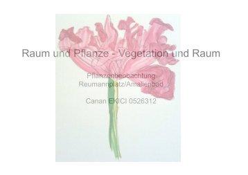 Raum und Pflanze - Vegetation und Raum