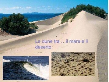 Roberto Spandre, Università di Pisa: Le dune