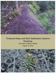 Tensioned Slope and Rock Stabilization Systems ... - Cee.hawaii.edu