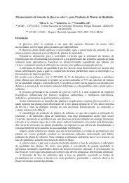 Manuseamento da Semente de Quercus suber L. para ... - ESAC