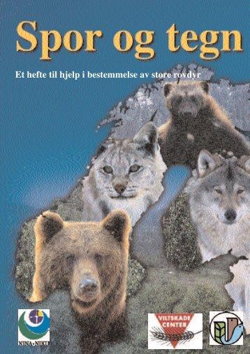 Et hefte til hjelp i bestemmelse av store rovdyr