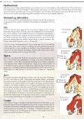 Et hefte til hjelp i bestemmelse av store rovdyr - Page 3