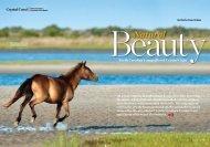 Crystal Coast - US Airways Magazine