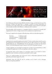 SFB Fellowships - Institut für Experimentalphysik - Desy