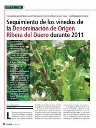 Seguimiento de los viñedos de la Denominación de Origen Ribera ...