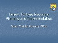 Desert Tortoise Recovery Action Planning and Implementation ...