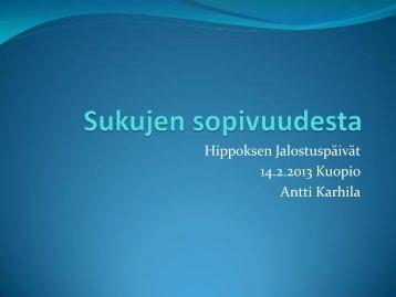 Sukujen sopivuus_Antti Karhila - Hippos